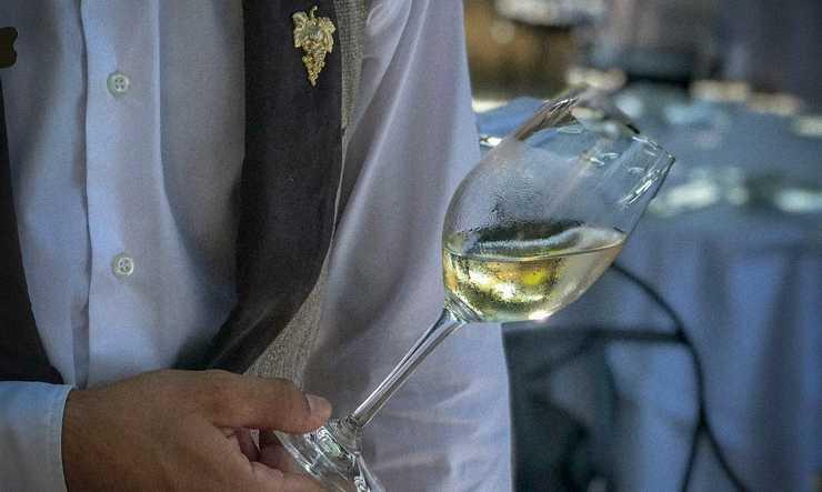 Dégustation de vin La Bastide