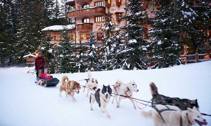 Les Airelles dog sledding expeditions
